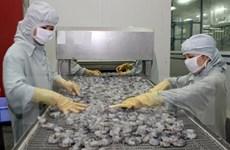 Sector bancario vietnamita busca impulsar asistencia crediticia para PyMEs