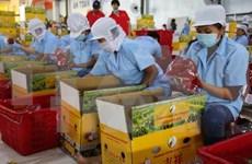 Impulsan ampliación de la marca vietnamita en Sudcorea