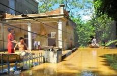 Ninh Binh realiza esfuerzos para superar secuelas de inundaciones