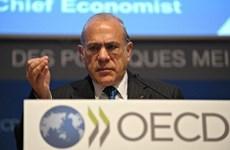 OCDE: Vietnam desempeña papel importante en integración financiera del APEC