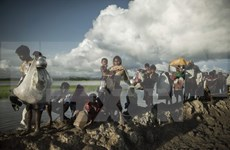 Australia aumenta asistencia humanitaria ante crisis de refugiados rohingyas en Myanamar