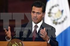 Presidente mexicano: Vietnam y México uniendo al Pacífico