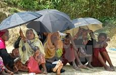 Consejo de Seguridad de ONU emite declaración sobre situación en estado myanmeno de Rakhine
