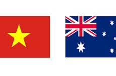 Diputado australiano destaca desarrollo de relaciones multifacéticas con Vietnam