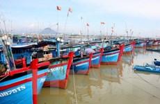 Provincia vietnamita de Nam Dinh se fuerza por impulsar progreso de economía marítima