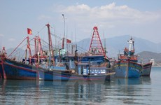 Provincia vietnamita de Tra Vinh respalda a pescadores en acceso a los seguros