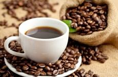 Vietnam busca ingresar fondo multimillonario en 2030 por exportaciones de café
