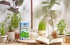 Alimentos orgánicos: Nueva tendencia de consumidores vietnamitas