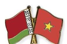 Resaltan contribución de Asociación de Amistad Vietnam- Belarús al enriquecimiento de amistad bilateral