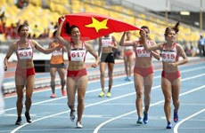 Deporte vietnamita cosecha alentadores resultados en 2017