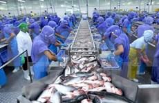 Ciudad Ho Chi Minh promueve el desarrollo del sector privado