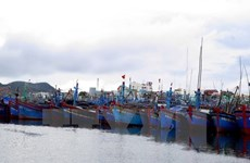 Provincia centrovietnamita promueve pesca en alta mar