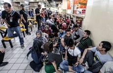 Malasia arresta más de 47 mil inmigrantes ilegales en 2017