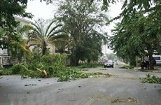Filipinas: tormenta Sanba sega vida de cuatro personas