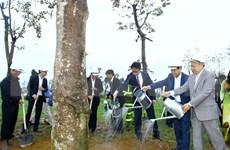 Inician en Hanoi festival de plantación de árboles