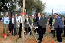 Convocan en Bac Kan campaña para sembrar árboles