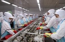 Proponen soluciones para reducir efectos de sanción aplicada por UE a la pesca vietnamita