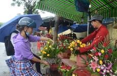 Órgano de la ONU convoca concurso fotográfico sobre mujer vietnamita