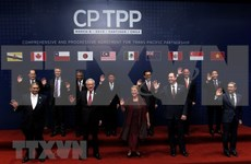 Vietnam y otros países del Pacífico firman histórico acuerdo comercial CPTPP