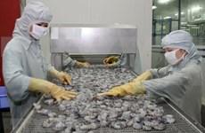 Demandan a EE.UU. revisar resultados de derechos antidumping impuestos a camarones vietnamitas