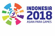 Nutrida participación en Carrera Olímpica Bac Ninh en respuesta a ASIAD 18