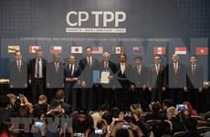 Vietnam debe impulsar reformas para mejor aprovechamiento del CPTPP, afirma experto singapurense