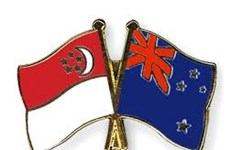 Singapur y Nueva Zelanda fortalecen cooperación en defensa