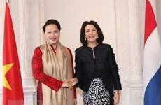 Presidenta parlamentaria de Vietnam mantiene conversaciones con titular de Cámara Baja holandesa