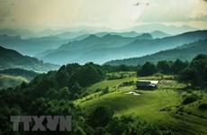 Vietnam avanza en gestión sostenible de bosques