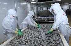 Vietnam: Exportación acuícola asciende a mil 700 millones de dólares en primer trimestre