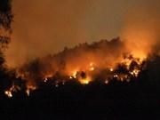 Altiplanicie Occidental de Vietnam promueve medidas preventivas contra incendios forestales