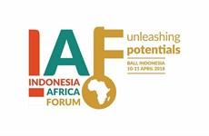 Indonesia interesada en promover cooperación económica con África