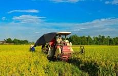 Vietnam aspira a tener 15 mil cooperativas agrícolas para 2020