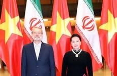 Vietnam e Irán aspiran a intercambio comercial de dos mil millones de dólares