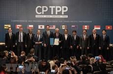 Todas las economías pueden participar en CPTPP, afirma Vietnam
