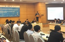 Seminario sobre aplicación por empresas vietnamitas de los derechos de propiedad intelectual