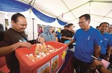 Malasia impulsa modelo de comunidad de cultivo urbano