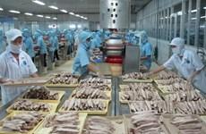 Vietnam demuestra al mundo sus acciones contra la pesca ilegal