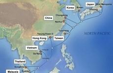 Conexiones a Internet desde Vietnam al mundo se recuperan por completo