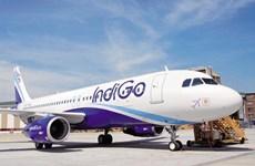 La mayor aerolínea de la India planea una nueva ruta a Vietnam