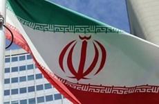 Insta Vietnam a continuación de diálogo sobre acuerdo nuclear de Irán