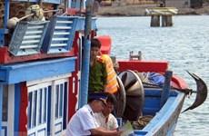 Vietnam multiplica esfuerzos por levantar tarjeta amarilla impuesta por UE
