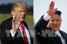 Japón y Singapur acuerdan cooperación en cumbre Trump- Kim