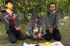 Vietnam desplegará mes de acción contra las drogas en junio