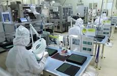 Impulsan cooperación de empresas vietnamitas con entidades multinacionales