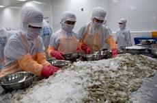 Bajan exportaciones de mariscos de Vietnam al mercado europeo