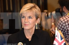 Proponen consolidar papel de cancillerías en impulso de lazos Vietnam- Australia