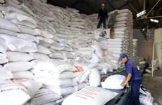 Registra Vietnam perspectivas positivas en exportación de arroz