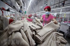 Compraventa de Vietnam alcanza crecimiento de 12 por ciento en cinco meses