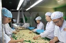 Ventas agropecuarias y pesqueras de Vietnam mantienen tendencia alcista en cinco meses